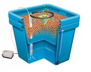 Come realizzare un impianto idroponico fai da te